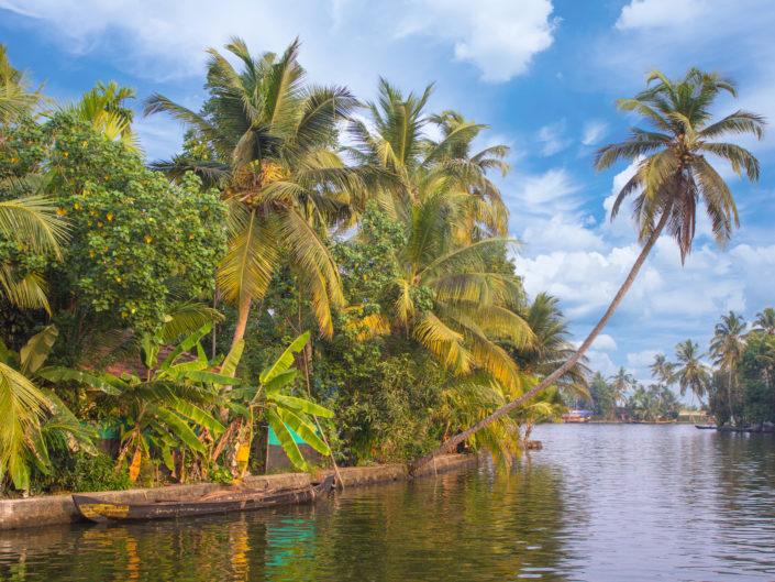 Backwaters - Alleppey, Inde by sineyes