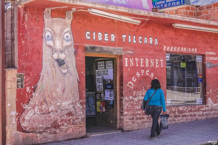 Beware of mad lama -Tilcara, Argentine