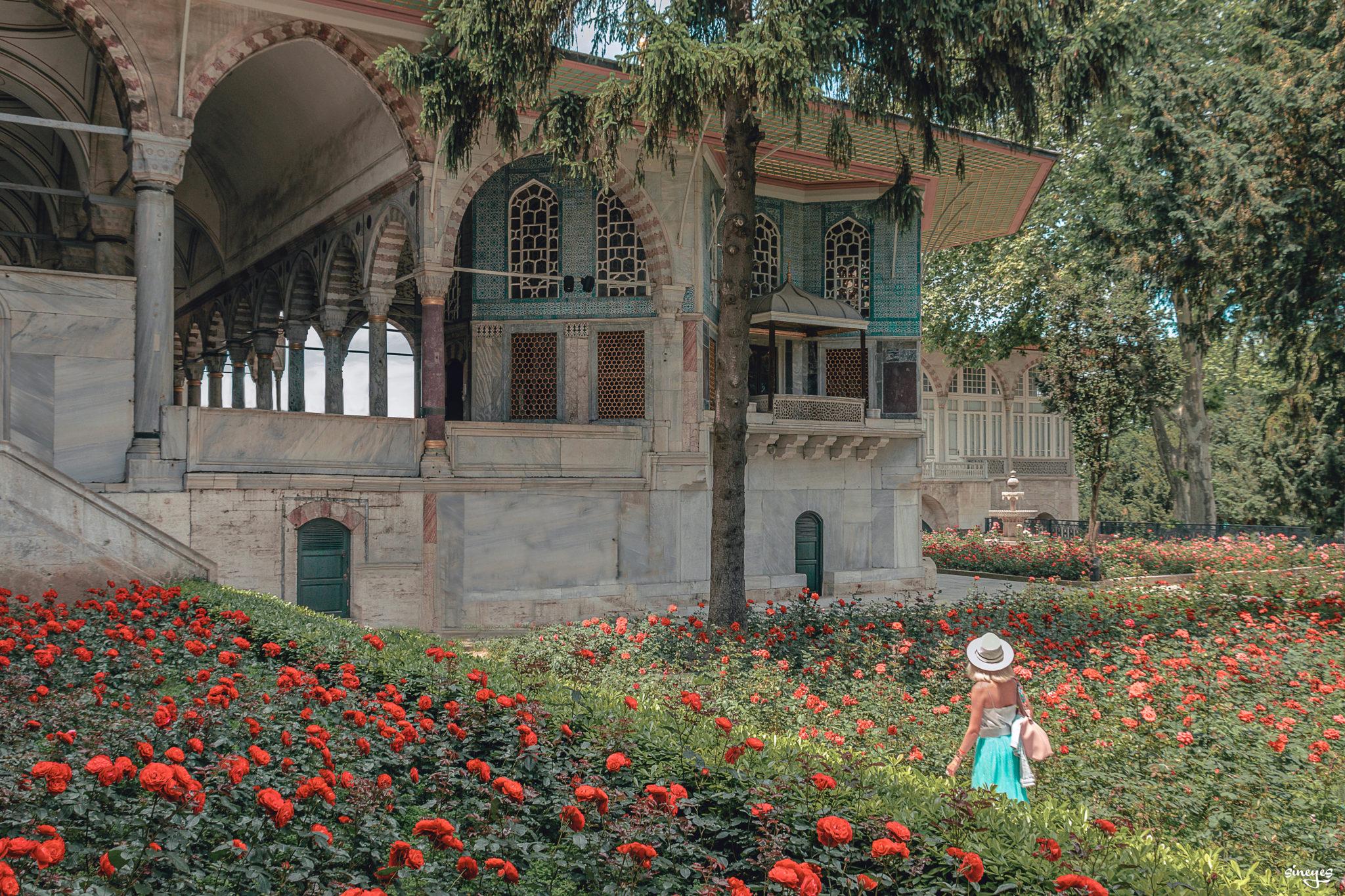 La russe et les roses - Istanbul, Turquie