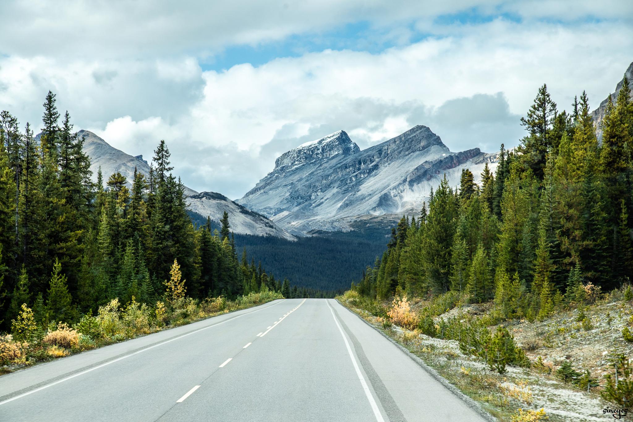 Hit the road by sineyes