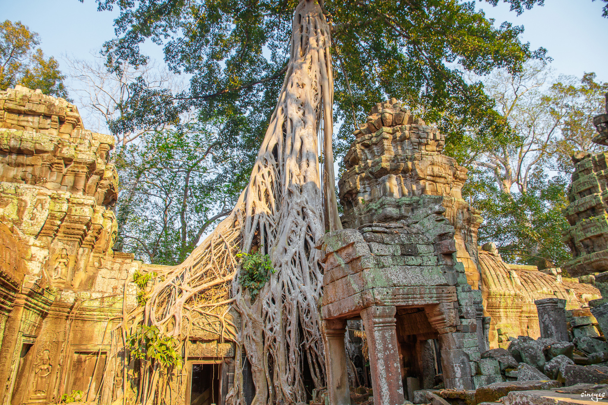 Ta Prohm by sineyes