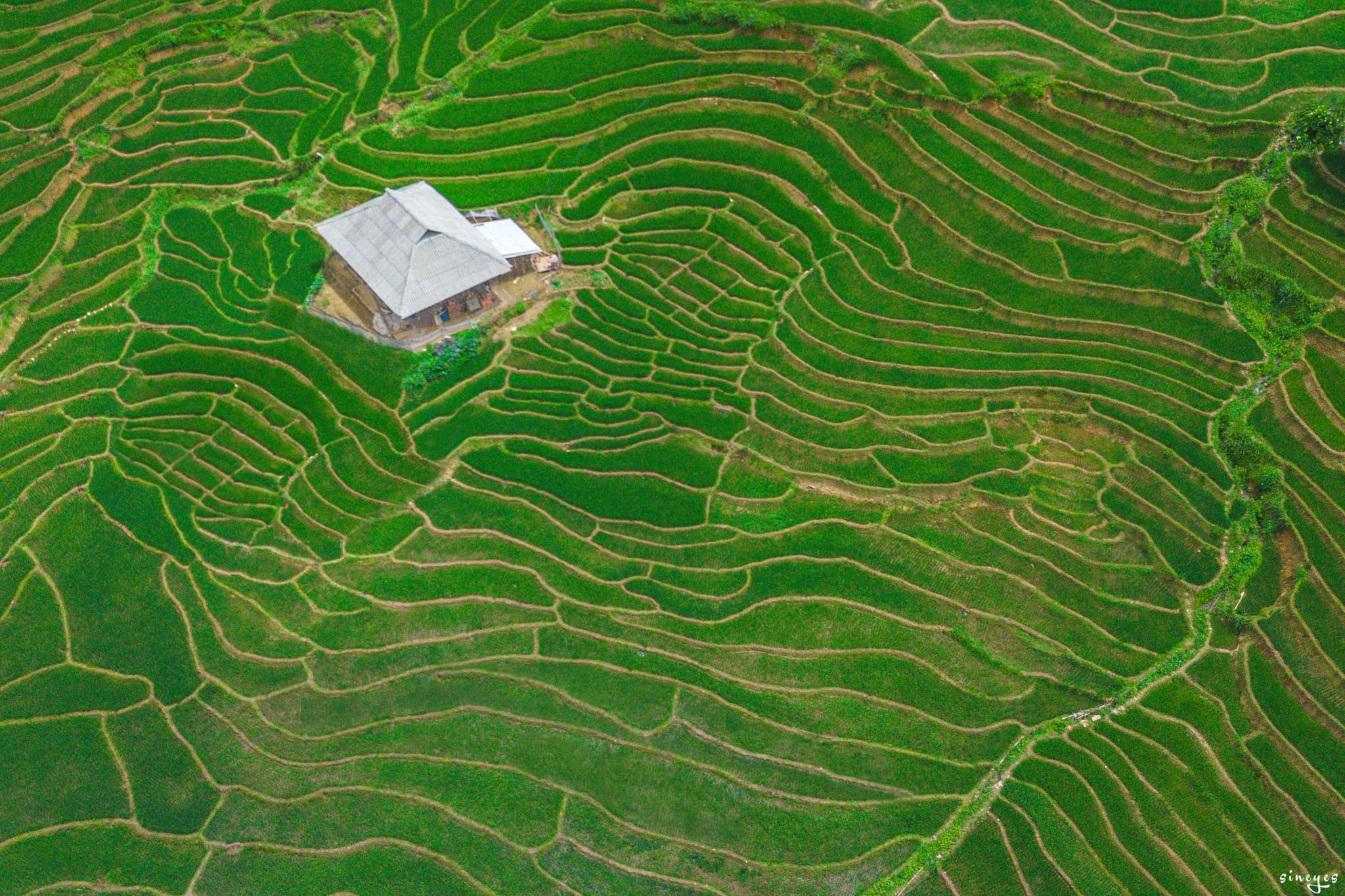 la petite maison dans la rizière by sineyes