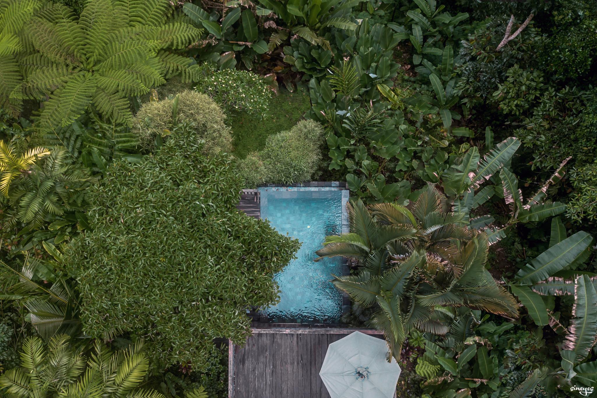 Infinite jungle pool by sineyes