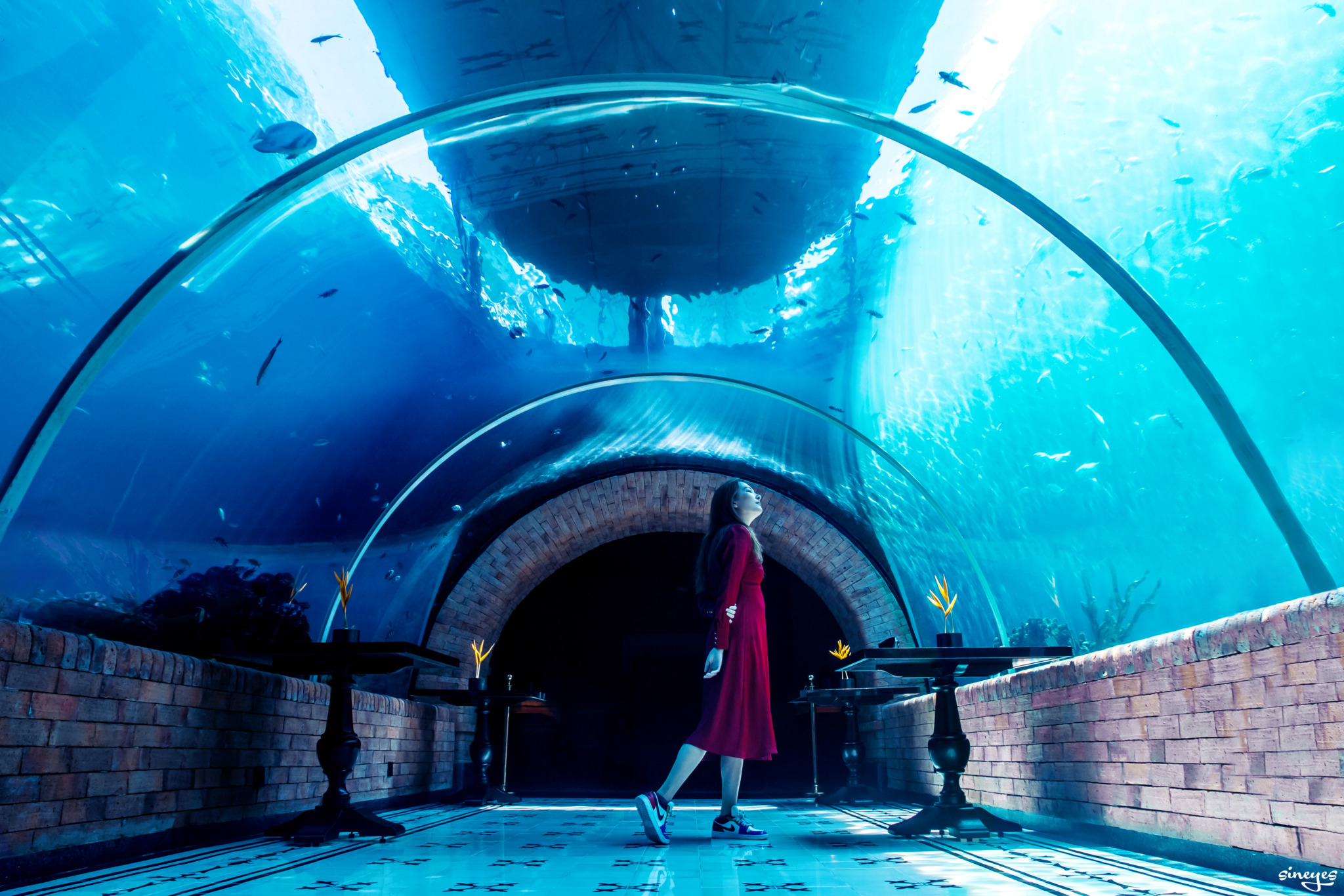 Aqua by sineyes